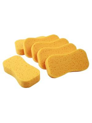 Wash Sponge - Pack of 6