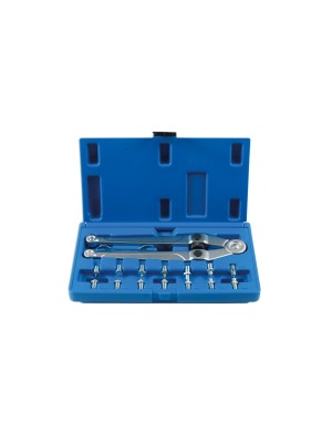 Adjustable Pin Wrench Set