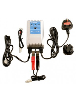 Maintenance Battery Charger